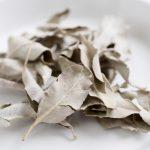 ホワイトセージの効能と効果的な使い方~食用から浄化まで!~