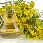 菜種油の特徴とは?代用するならどの油?