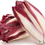 紫キャベツとは違う?イタリア生まれの西洋野菜トレビスとは