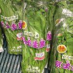 日本の伝統野菜!壬生菜の栄養や特徴とは?