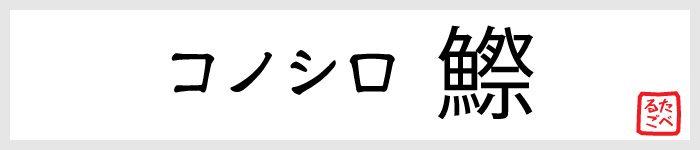 コノシロ(鰶)