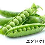 エンドウ(豆)