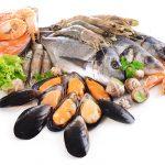 魚介とは?魚介の意味と定義について
