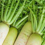 大根の葉っぱは栄養豊富!秘伝の混ぜご飯レシピも公開!