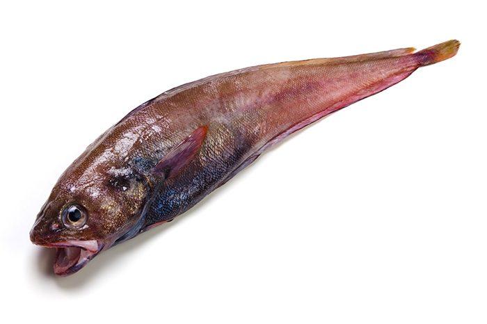 どんこ(エゾイソアイナメ)