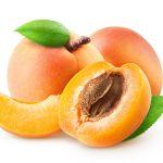 アプリコットとはあんずのこと。おいしい果実は料理やジャムにして生かそう!