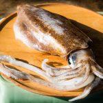コウイカの味やおすすめ料理。さばき方も
