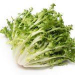 シャキシャキ野菜エンダイブのお味は?サラダに大活躍のエンダイブを解説